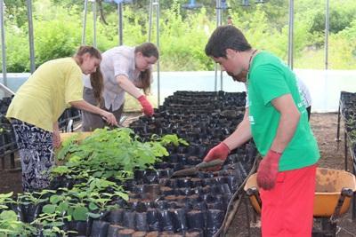Volunteers help clean and plant at the nursery