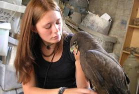 International Internships in Veterinary Medicine and Animal Care