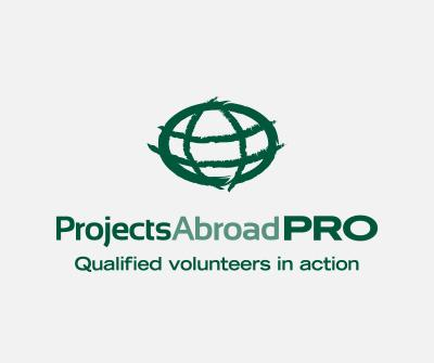 Projects for Professionals
